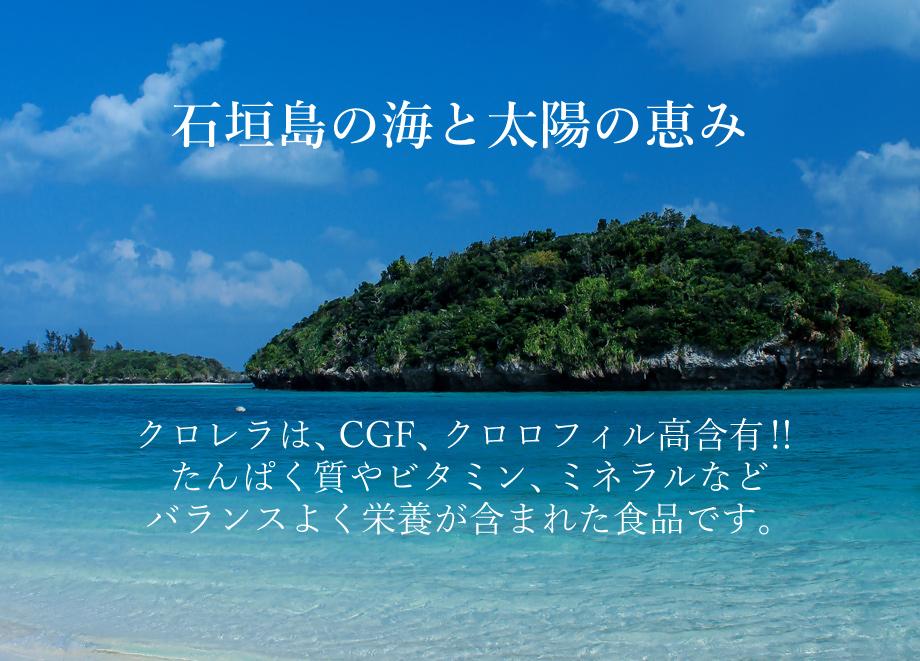 石垣島の海と太陽の恵み