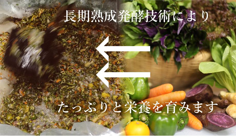 長期熟成発酵技術によりたっぷりと栄養を育みます